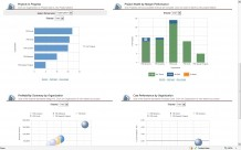 More charts from the Project Executive dashboard