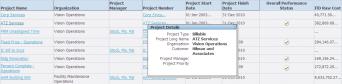 Project Details Hover Pop-up
