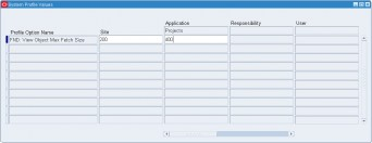 Setting the 'FND: View Object Max Fetch Size' profile at application level